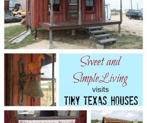 Tiny Houses in Texas