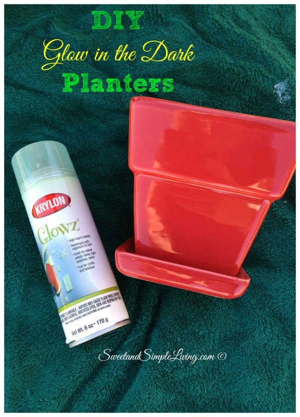 264 & DIY Glow In The Dark Planters - Sweet and Simple Living