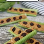 Easy Ants On A Log Recipe