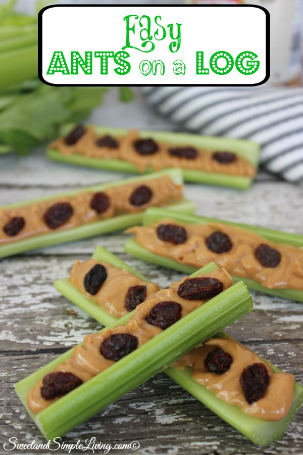 Easy Ants On A Log Recipe Sweet And Simple Living