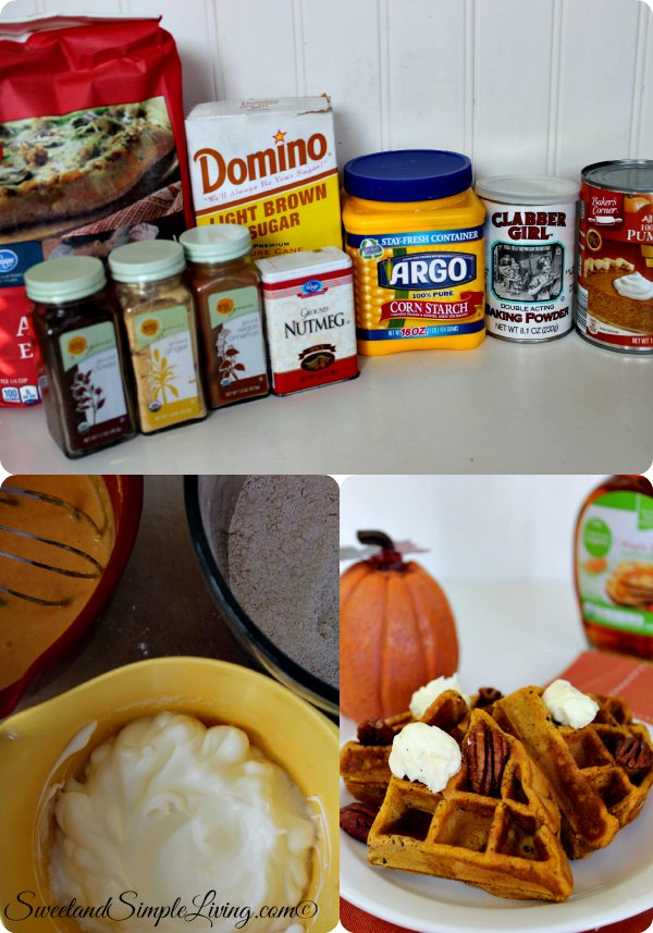 cuisinart egg cooker instructions