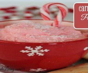Candy Cane Peppermint Dip