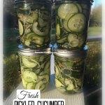 Fresh Pickled Cucumber Salad Recipe