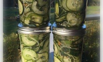 Pickled Cucumber Salad Recipe