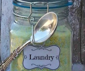 DIY Powder Laundry Detergent